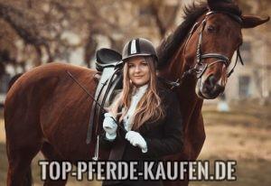 Pferde auf dem Markt kaufen